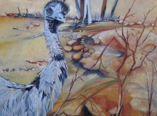 Emu, Perry Sandhills, Wentworth