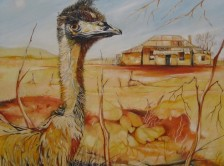 Emu Country
