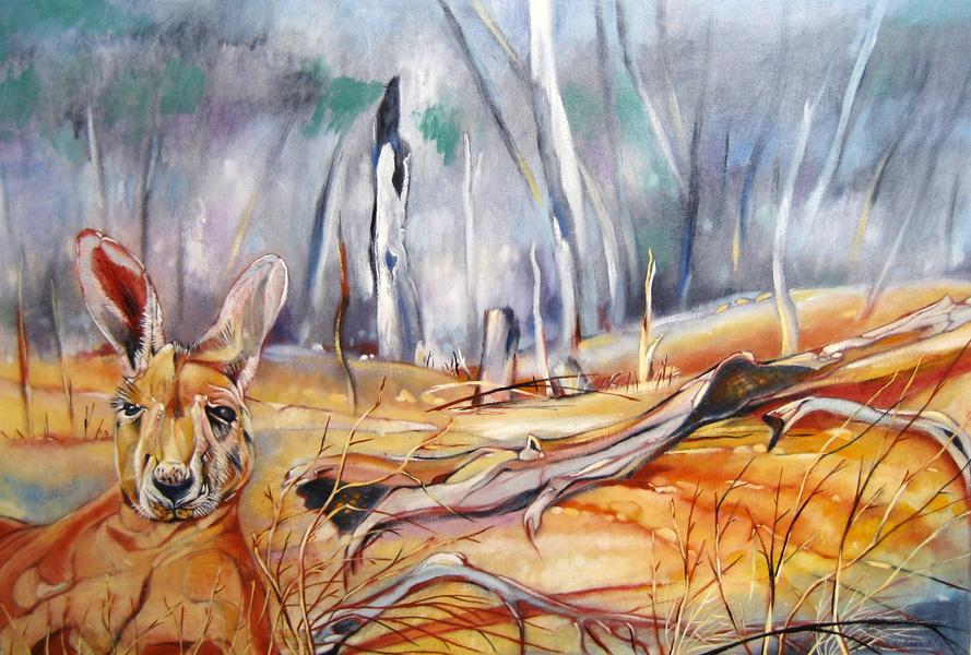 Kangaroo Country