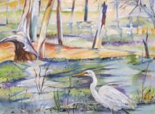 PL-IMG_2433-Heron-Waterhole