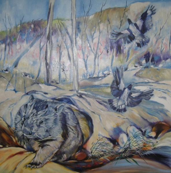 Wombat, Magpies