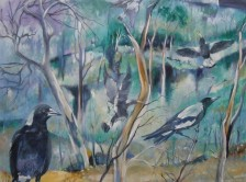 Magpies, Aireys Lighthouse